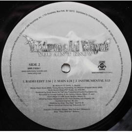 "Birdman & Lil Wayne – You Ain't Know  (12"" / Vinyl)"