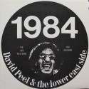David Peel & The Lower East Side – 1984  (LP / Vinyl)