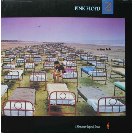 Pink Floyd -  A Momentary Lapse Of Reason (LP / Vinyl)
