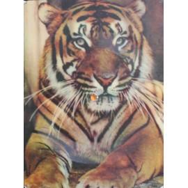 Nick La Rocca - Tiger Rag