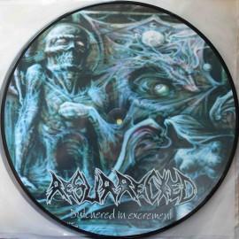 Resurrected – Butchered In Excrement (LP / Picture Vinyl)