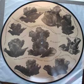 Jan Van Den Dobbelsteen – Cosmic Volume 15 - For Ambrosius (LP / Picture Vinyl)